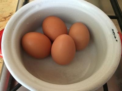 hány tojás kel